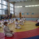 aikido2017-7