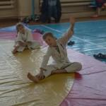 aikido2017-9